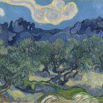 Vincent Van Gogh e gli uliveti